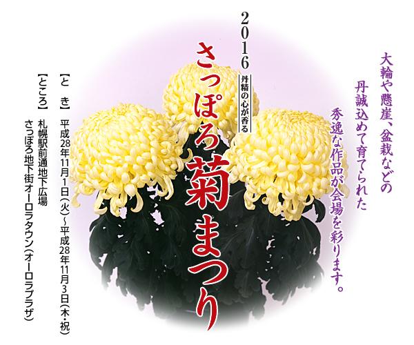 kkiku_matsuri